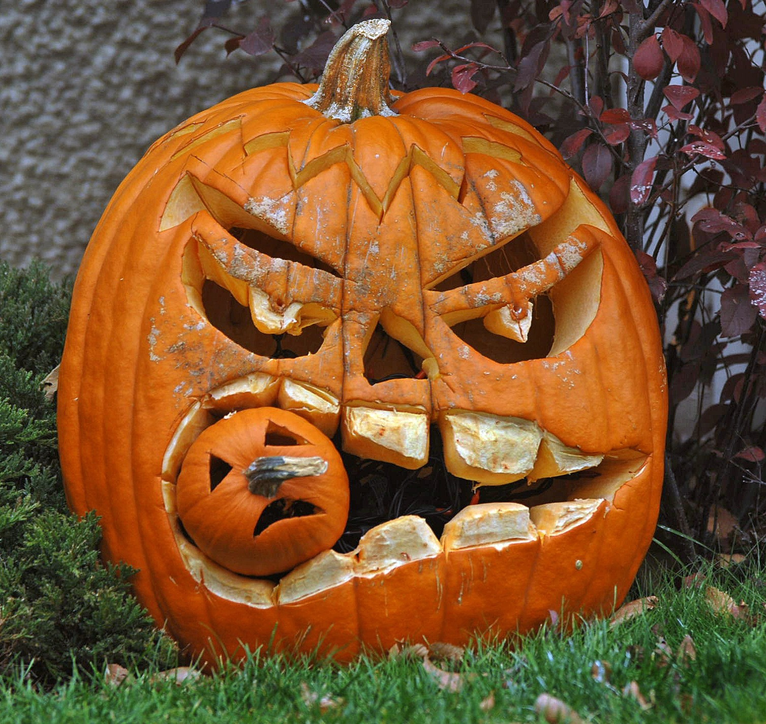 Pumpkin Shortage Could Mean A Sad Halloween