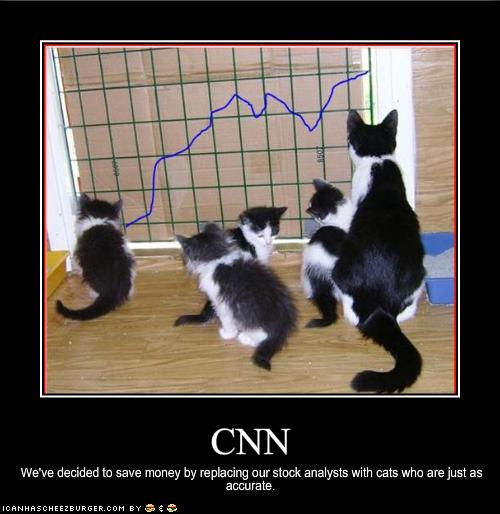funny-pictures-your-cats-are-stock-analysts1
