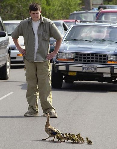 duck-passing