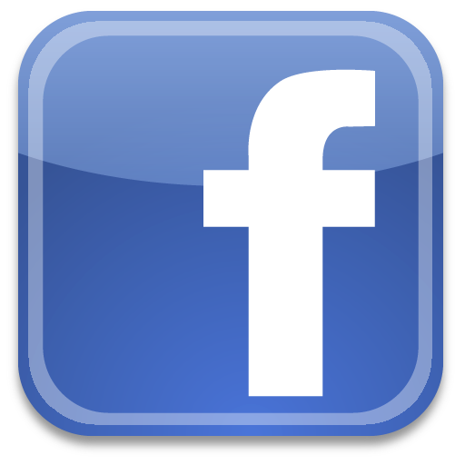 What's a name worth? Quite a bit, if you ask FACEBOOK, which paid $8 ...