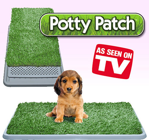 Dogs Bathroom Grass Porch Potty is Amazing First Automated Dog
