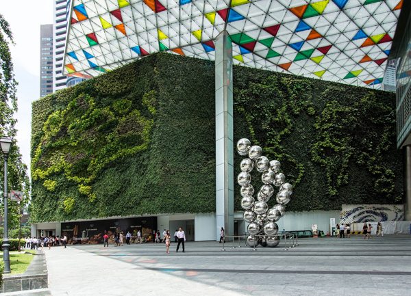 10 Inspiring Vertical Gardens Growing in Offices