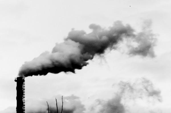 Climate Change Economy