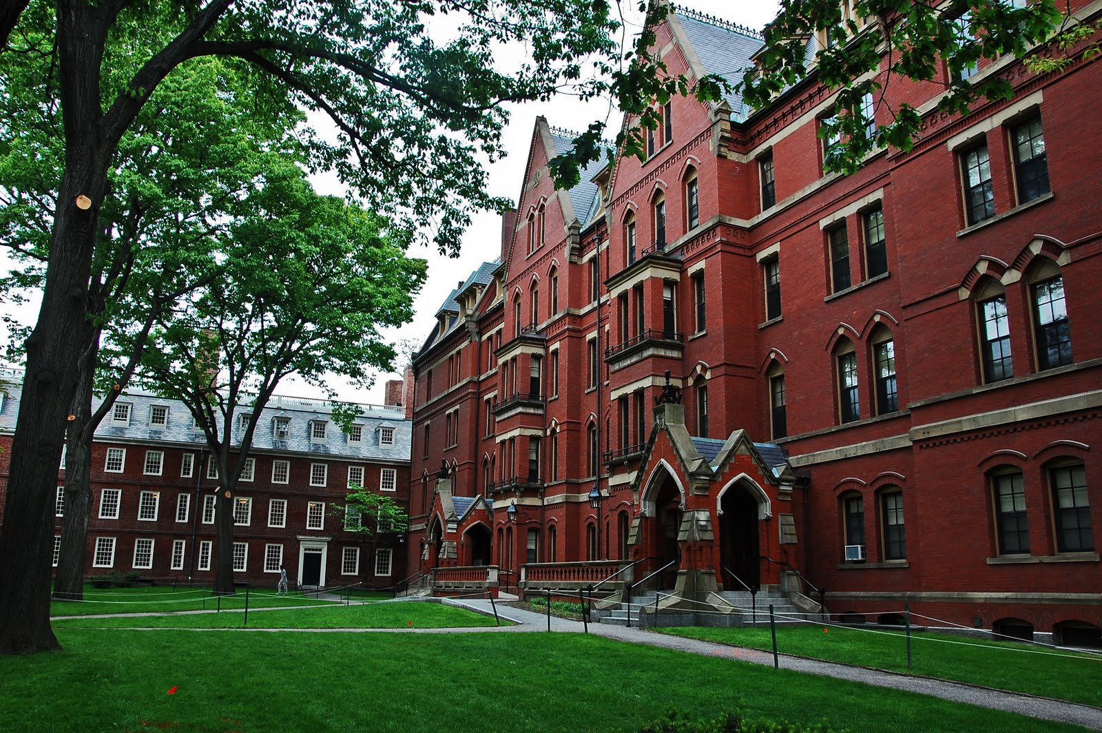 Harvard and best colleges in American to get a job after graduation