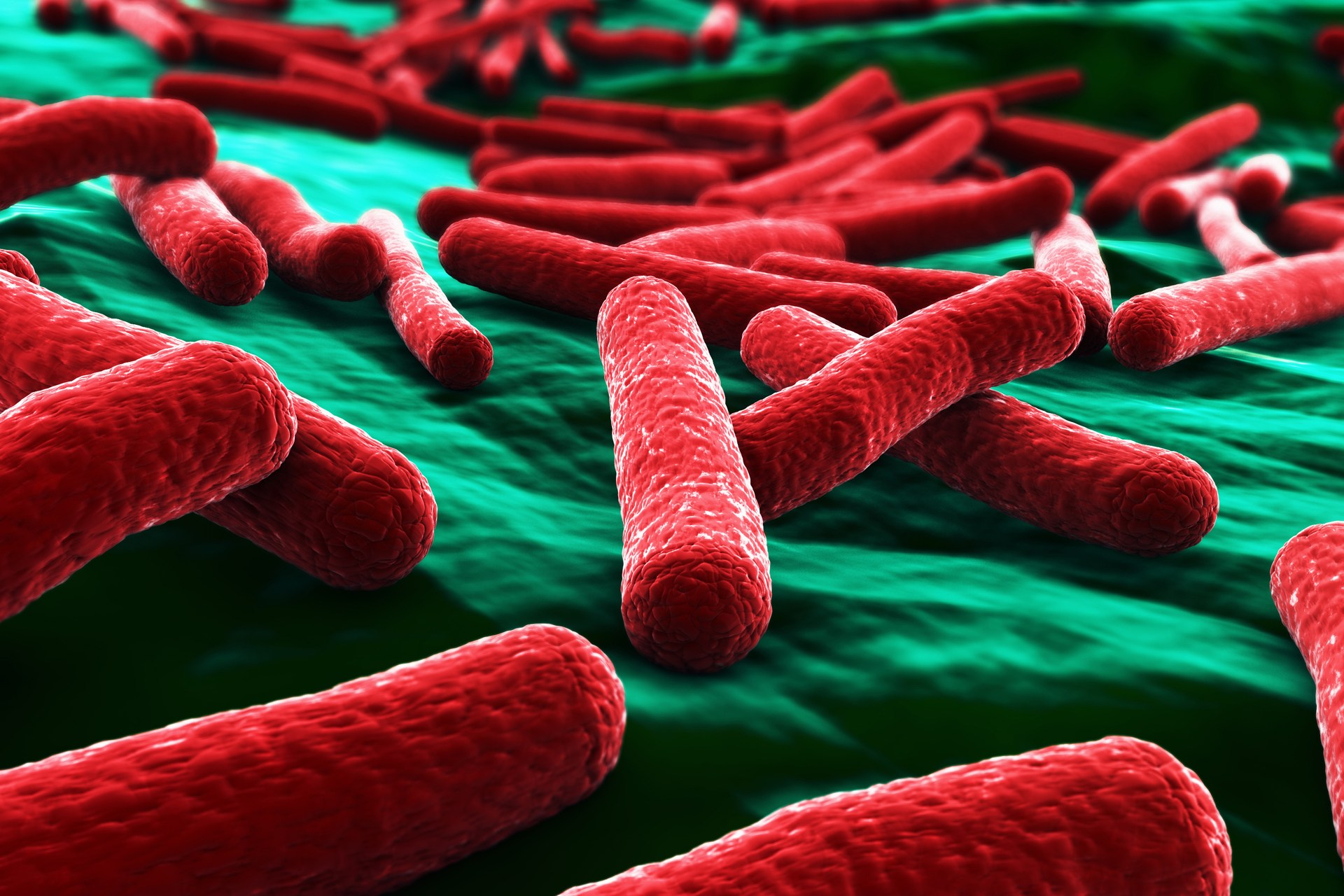 E Coli Outbreak Expands beyond Costco