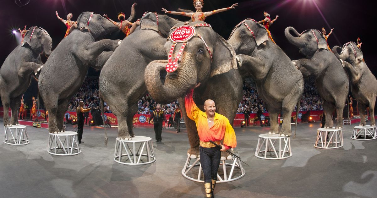 Ringling Bros Circus getting rid of elephant performers