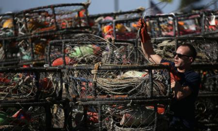 Crab Fisherman