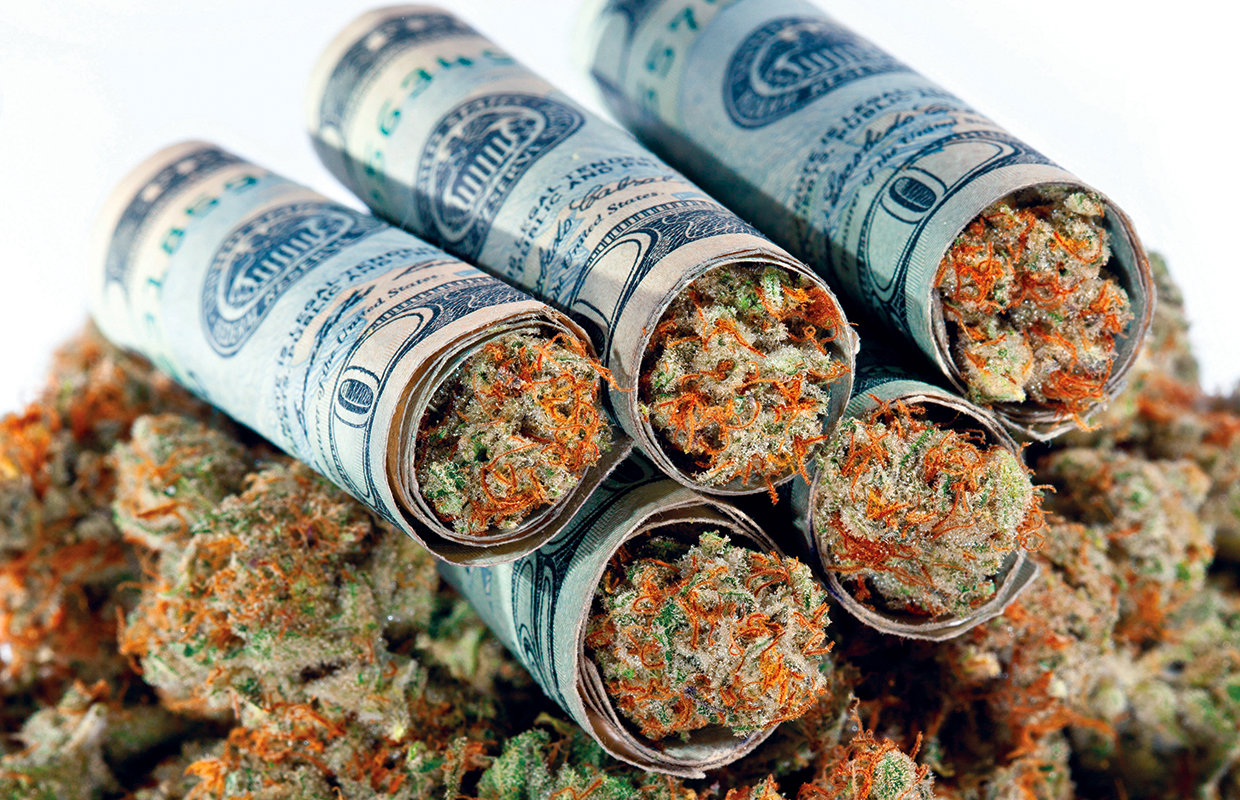 15 strange marijuana businesses that are thriving with legalized pot