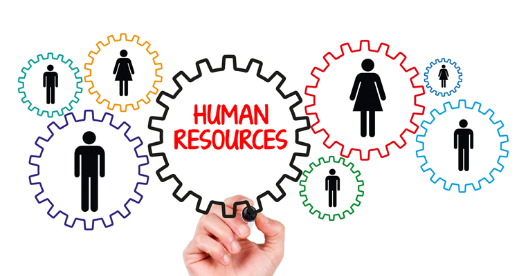 how to decide whether or not to outsource your hr department