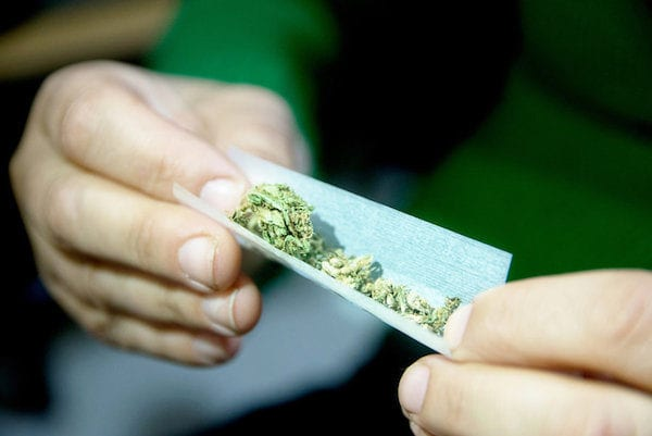 Cannabis is Legal in Roughly 50% of The Country