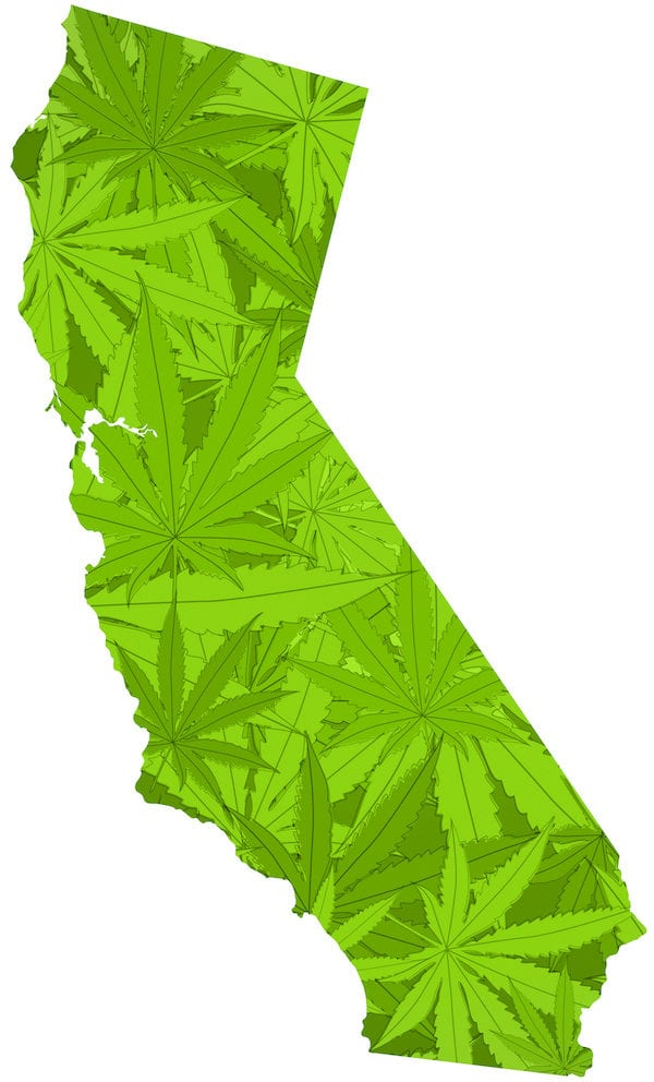 California Is Still A Leader in Pot